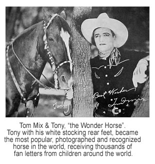 Cowboys Their Horses In Movies Circuses